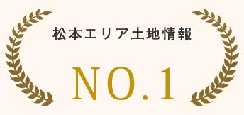 松本市エリア土地情報NO.1