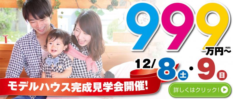 11月17(土)~18(日)新村見学会開催!